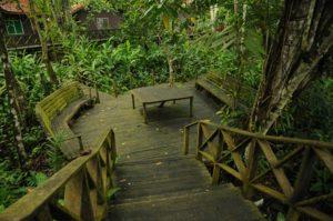 8.Frog Platform at KRL